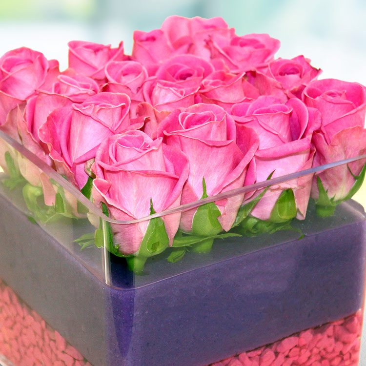 the-cube-rose-750-4109.jpg