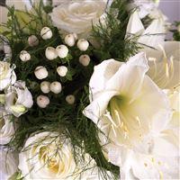 white-cocon-et-son-vase-200-5828.jpg