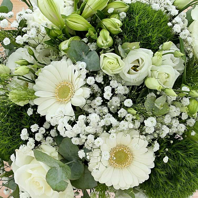 white-miracle-et-son-vase-200-3211.jpg
