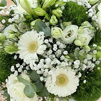 white-miracle-xl-et-son-vase-200-3208.jpg