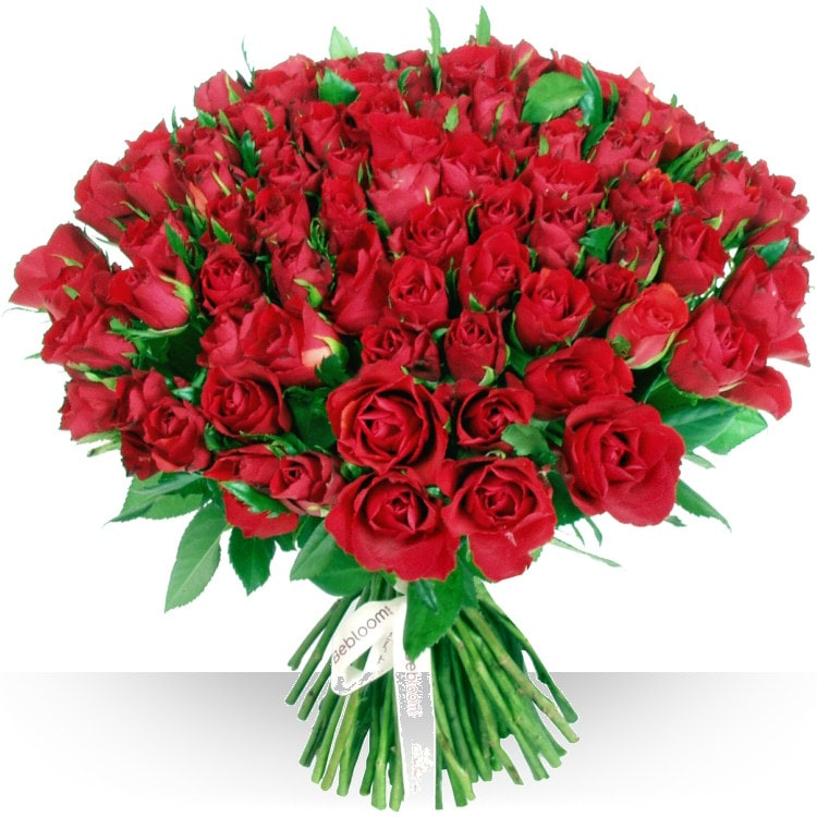 Anniversaire 101 roses rouges for Bouquets de roses