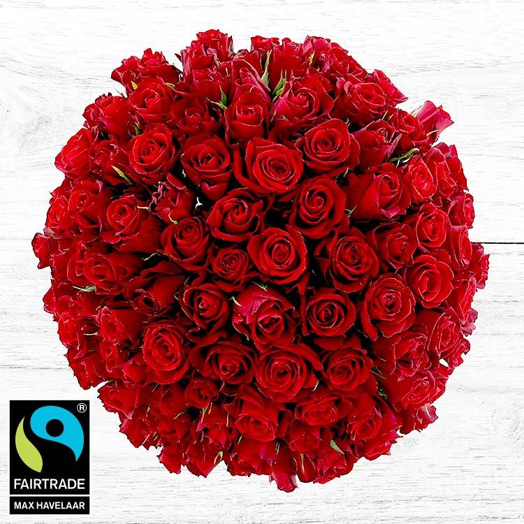 Photo gros bouquet de roses rouges
