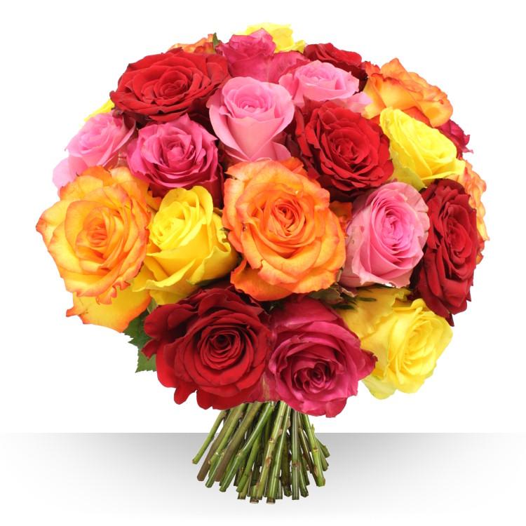 Flicitations 28 gros boutons varis for Fleurs et cadeaux