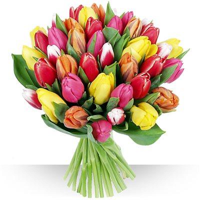 Livraison de fleurs avec le fleuriste for Livraison tulipes