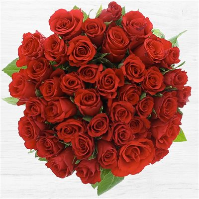 40 roses rouges - bebloom
