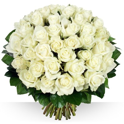 50 roses Platine