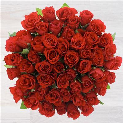 50 roses rouges - bebloom