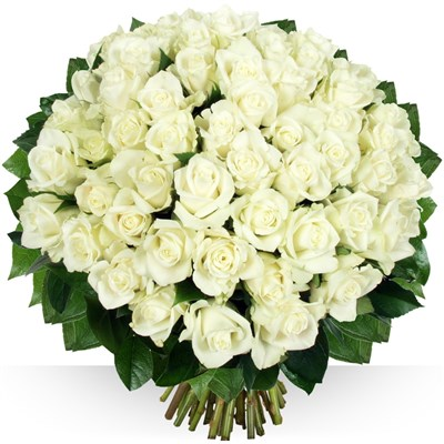 60 roses Platine