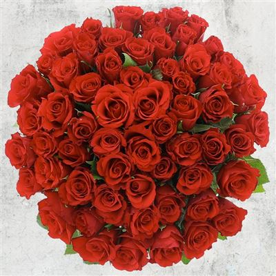 60 roses rouges - bebloom