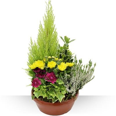 Livraison de fleurs bouquets d 39 automne - Composition florale automne ...