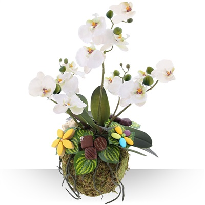 Design d'orchidée gourmande XL