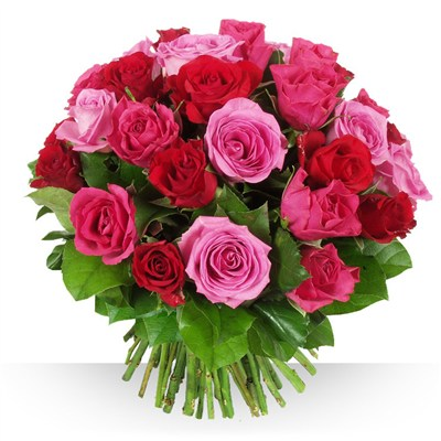 40 roses Camaïeu - bebloom