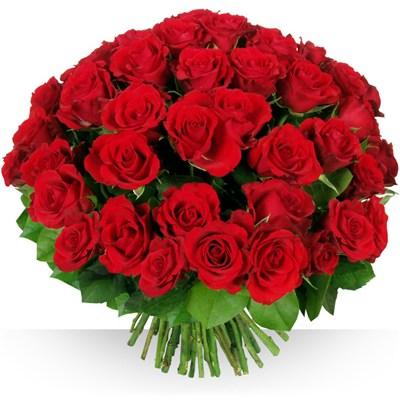 50 roses Glamour