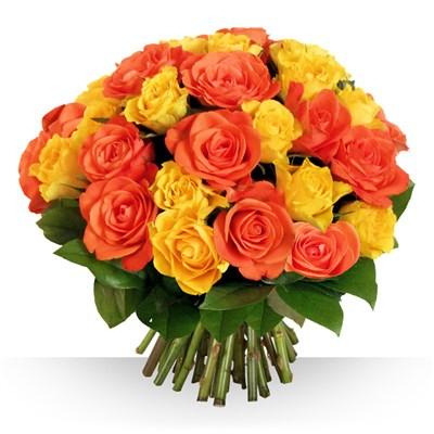 40 roses Safran - bebloom