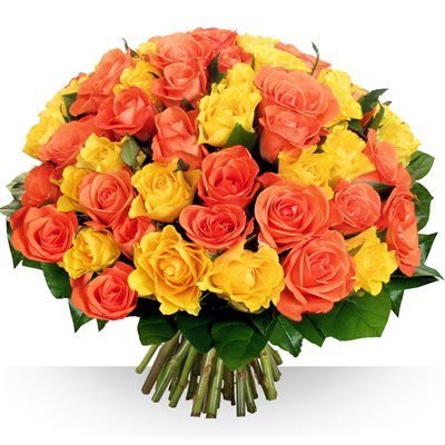 60 roses Safran - bebloom