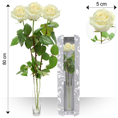 Trio de roses blanches - bebloom