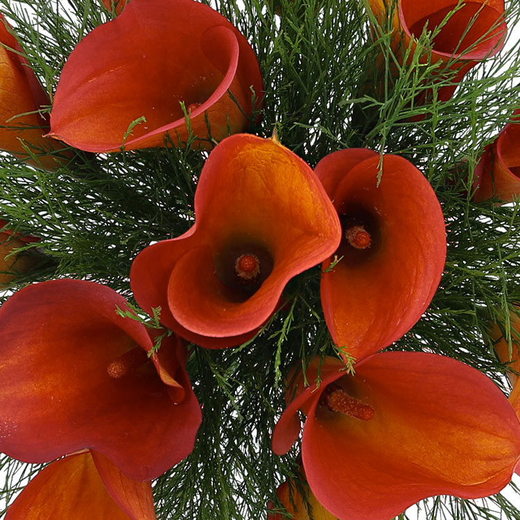 Bouquet de callas orange