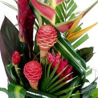 Mariage composition exotique xl for Livraison fleurs exotiques