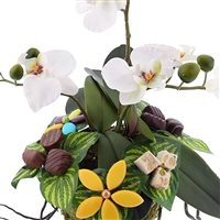 design-d-orchidee-gourmande-200-2217.jpg