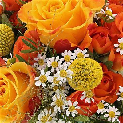 Livraison de fleurs for Livraison de fleurs rapide