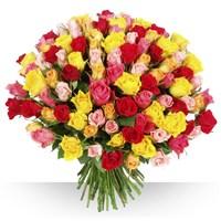 Image 101 roses variées par Bebloom