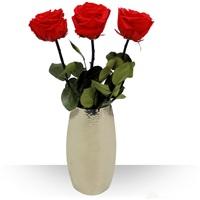 Image 3 Roses éternelles et leur vase design par Bebloom