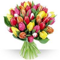Faites plaisir avec ce bouquet de saison, confectionné avec 30 tulipes livrés...
