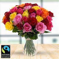 50 roses multicolores + vase - bebloom