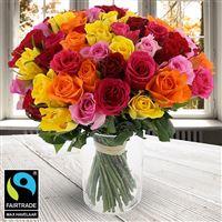 60 roses multicolores + vase - bebloom