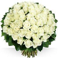 Image 60 roses Platine par Bebloom