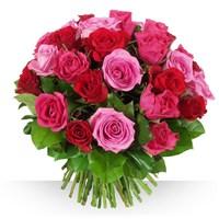 Image 40 roses Camaïeu par Bebloom