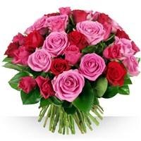 Image 50 roses Camaïeu par Bebloom