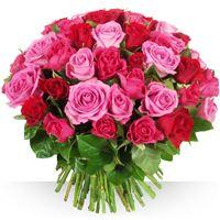 Image 60 roses Camaïeu par Bebloom