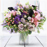 Fresh Color et son vase - bebloom