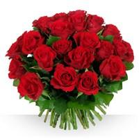 Image 40 roses Garance par Bebloom
