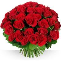 Image 60 roses Garance par Bebloom