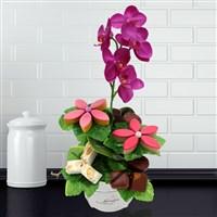Fleuriste gourmand : Orchidee gourmande - bebloom