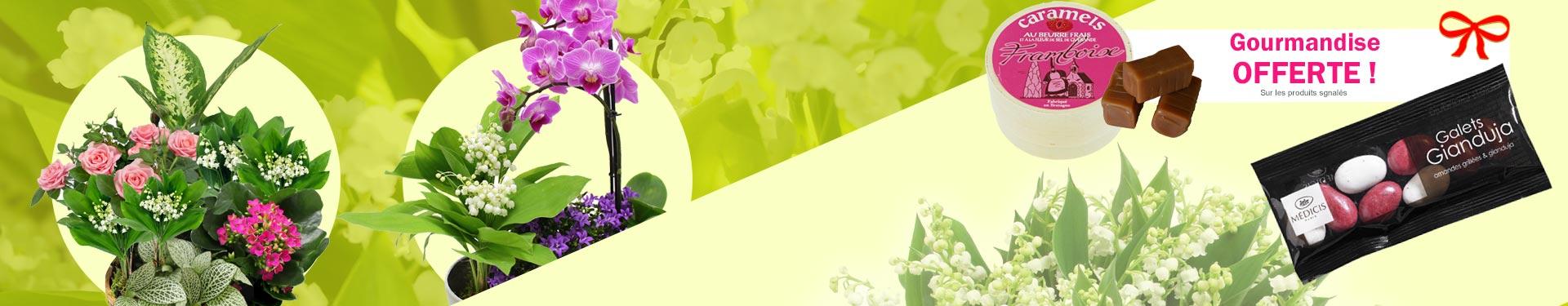 Livraison de fleurs avec le fleuriste for Muguet livraison domicile